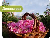 dolina-roz-1