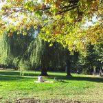 Борисова градина София 3
