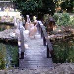 Морской парк Варна 3