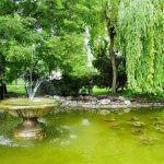 Парк царя Симеона Пловдив 2