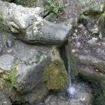 Витоша, источник Живая вода 2