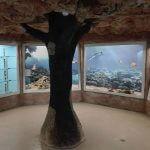 музей естественной истории Пловдив 1