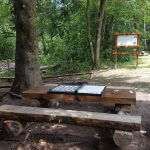 парк Витоша дендрариум - 2