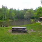парк Витоша дендрариум - 3